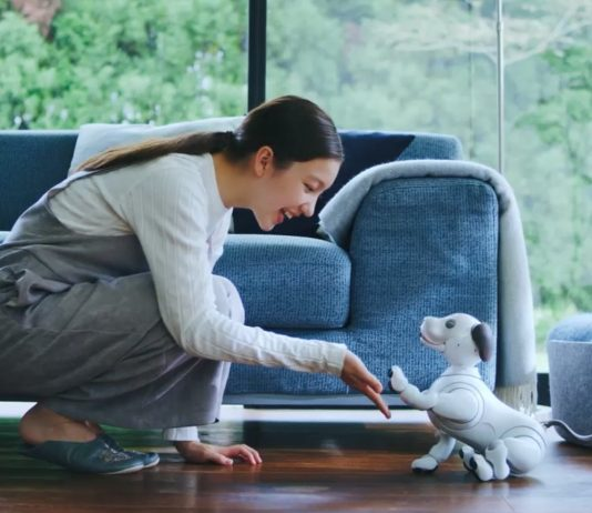 Woman playing with the Sony aibo AI puppy